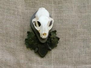 panoplie craniu ras dc9_1
